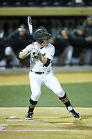 Chris Lanzilli (24) of the Wake Forest Demon Deacons at bat against the Florida State Seminoles at David F. Couch Ballpark on March 9, 2018 in  Winston-Salem, North Carolina.  The Seminoles defeated the Demon Deacons 7-3.  (Brian Westerholt/Four Seam Images)