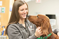 Animal Emergency and Referral Center in Flowood. Candid shots