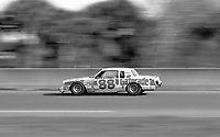 Bobby Allison races down the back straight during the 1982 Daytona 500. (Photo by Brian Cleary)