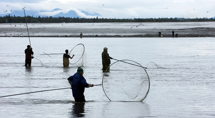 Dipnet fishermen work the mouth of the Kenai River where it drains into Cook Inlet in downtown Kenai. Residents of Alaska can use the nets, which trap fish by their gills, in the Kenai River and nearby Kasilof River for several weeks to fill their freezers and canning jars with sockeye salmon.
