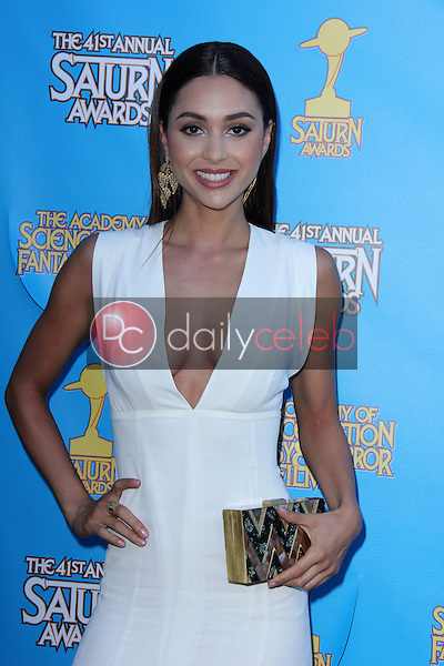 Lindsey Morgan<br />