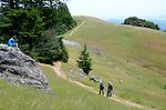 Hikers at Mt. Tamalpais State Park