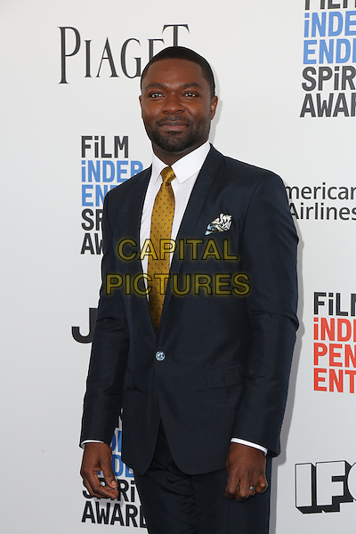 SANTA MONICA, CA - FEBRUARY 25: XXX  attends the 2017 Film Independent Spirit Awards at Santa Monica Pier on February 25, 2017 in Santa Monica, California. (photo credit: Parisa Afsahi/MediaPunch).<br /> CAP/MPI/PA<br /> &copy;PA/MPI/Capital Pictures
