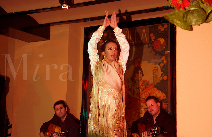 Wonderful Flamenco dancer show with traditional dancing at the El Arenal show in Seville Sevilla Spain