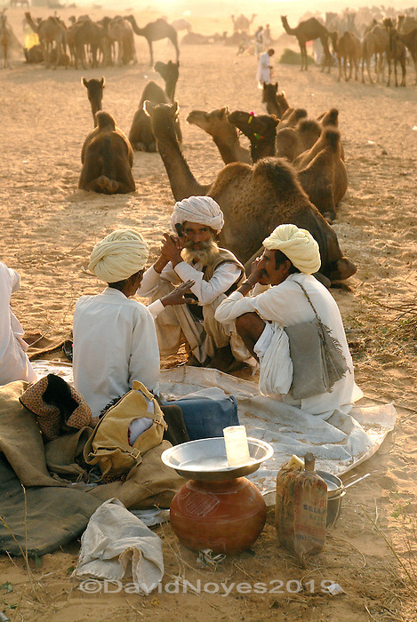 The Raika are the pastoral nomads of western Rajasthan. For Raika communities, the camel is the basis of their livelihood. During the annual Pushkar Camel Fair thousands of herders camp under the stars while they buy, sell, race, and parade their prized animals.