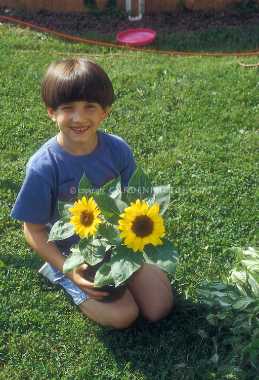Boy sitting amiling with sun flowers in garden on lawn in backyard