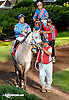 Burning Breeze before The Delaware Park Arabian Juvenile Championship (gr 3) at Delaware Park on 9/28/13
