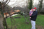 03-01-12: Stan Garvanovic and his daughter Mia (2) examinging a fallen tree   in  Killarney National Park on Tuesday.  Picture: Eamonn Keogh (MacMonagle, Killarney)