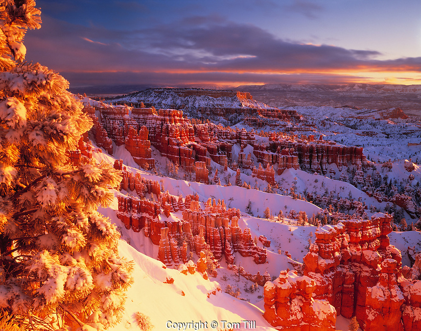 Winter Sunrise at Bryce, Bryce Canyon National Park, Utah