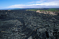 Lava fields, Hawaii Volcanoes National Park, Big Island