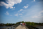 A bridge over the Anacostia river leads to Kingman Island in Washington, DC.