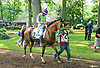 Sierra Winds before The Delaware Park Arabian Oaks (grade II) at Delaware Park on 8/6/16