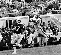 Chicago Bears #20 Joe Taylor leaps to grab a pass  to Oakland  Raider tight end Raymond Chester. (1972 photo/Ron Riesterer)