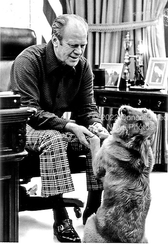 "United States President Gerald R. Ford enjoys the company of his pet Golden Retriever ""Liberty"" in the Oval Office of the White house on February 2, 1975.  ""Liberty"" was a gift to the President and is now a year old.<br /> Mandatory Credit: David Hume Kennerly / White House via CNP"