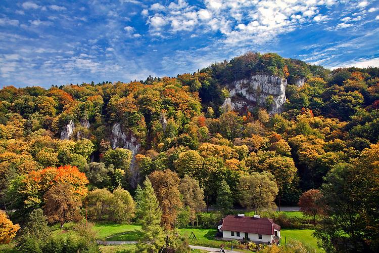 Dolina rzeki Prądnik na obszarze Ojcowskiego Parku Narodowego