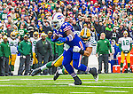 "14 December 2014: Buffalo Bills running back Anthony ""Boobie"" Dixon rushes for a 5-yard gain in the second quarter against the Green Bay Packers at Ralph Wilson Stadium in Orchard Park, NY. The Bills defeated the Packers 21-13, snapping the Packers' 5-game winning streak and keeping the Bills' 2014 playoff hopes alive. Mandatory Credit: Ed Wolfstein Photo *** RAW (NEF) Image File Available ***"