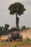 Cemitério dentro de área preparada para plantação de soja  no Km 45 da BR 183-Santarém Cuiabá ao lado da Floresta Nacional de Tapajós.Belterra Pará, Brasil.Foto Paulo Santos<br /> 7/11/2007Be