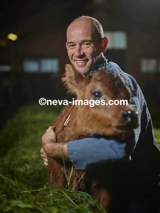 Vollèges octobre 2016,  Robert Bruno, vétérinaire au cabinet de la Forge, s'occupe du bétail © sedrik nemeth