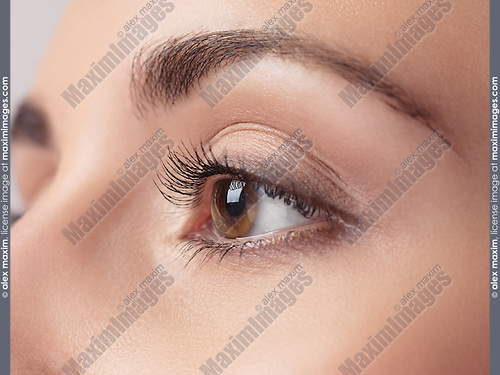 Closeup of woman eye with brown iris and long eyelashes
