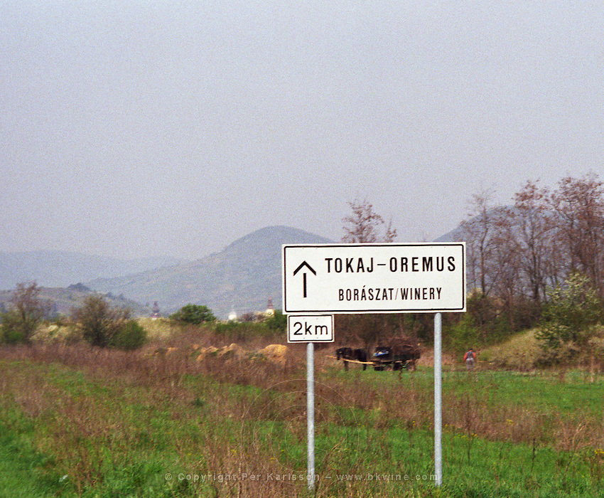 """On the road to the Oremus Winery in Tolcsva in the Tokaj region. Road sign saying 2 km to the """"Boraszat"""". A horse drawn cart in the background (as you often see in the region). Oremus is owned by the Alvarez family that also owns Vega Sicilia in Spain It is managed by Andras Bacso. Credit Per Karlsson BKWine.com"""