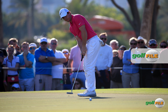 Rory McIlroy (NIR) on the 14th green during Round Two (Pink Friday) of the 2016 Omega Dubai Desert Classic, played on the Emirates Golf Club, Dubai, United Arab Emirates.  05/02/2016. Picture: Golffile | David Lloyd<br /> <br /> All photos usage must carry mandatory copyright credit (&copy; Golffile | David Lloyd)