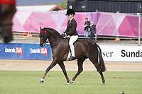 Champion Child's Pony