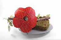 Rafflesia flower on tetrastigma vine; designer - Delrosa Marshall, folder - Delrosa Marshall