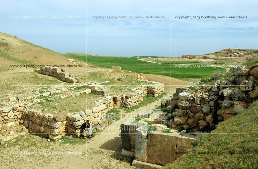 SYRIA, heritage site Ebla near Aleppo / SYRIEN, Altertum Ebla bei Aleppo