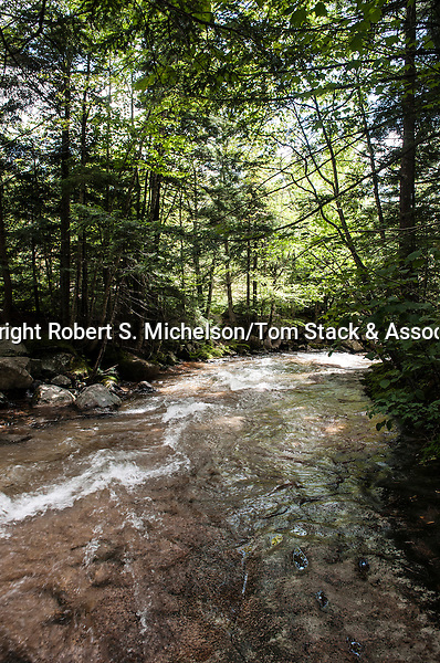 Pemigewasset River, Franconia Notch State Park, Lincoln, New Hampshire
