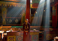 Monk at Gasang Monastery., Trindu, 2006