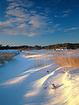 Winter view at Popham Beach State Park, Maine, USA