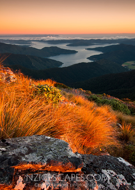 Sunset views from highest peak in Marlborough Sounds Mt. Stokes 1203m with its alpine vegetation toward Endeavour Inlet, Marlborough Region, South Island, New Zealand, NZ