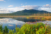 Pondicherry Wildlife Refuge - Cherry Mountain from Moorhen Marsh along the Presidential Range Rail Trail  (Cohos Trail) in Jefferson, New Hampshire USA during the spring months.