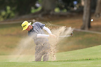 Dale Whitnell (ENG) on the 11th fairway during Round 2 of the Australian PGA Championship at  RACV Royal Pines Resort, Gold Coast, Queensland, Australia. 20/12/2019.<br /> Picture Thos Caffrey / Golffile.ie<br /> <br /> All photo usage must carry mandatory copyright credit (© Golffile | Thos Caffrey)