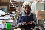 Zipporah Mutuku, a casual worker, assembles bank brochures printed at Colourprint in Nairobi, Kenya.