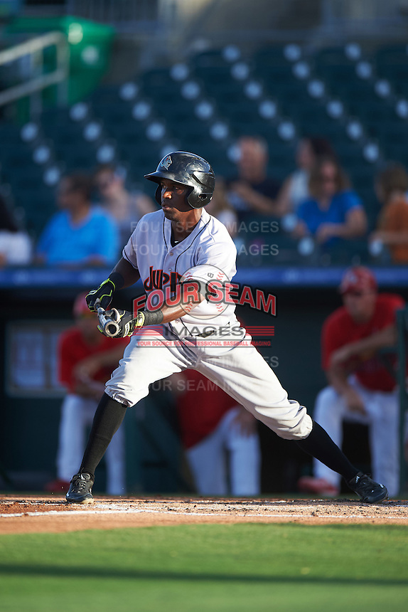 Jupiter Hammerheads center fielder Jeremias Pineda (17) squares to bunt during a game against the Palm Beach Cardinals on August 12, 2016 at Roger Dean Stadium in Jupiter, Florida.  Jupiter defeated Palm Beach 9-0.  (Mike Janes/Four Seam Images)