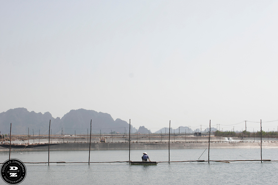 A farmer uses a small craft to move across a  holding pool at a prawn farm in Yen Hung, Vietnam.  The farm, next to Halong Bay, has pools that can raise several tons of prawns for each harvest.   Photograph by Douglas ZImmerman