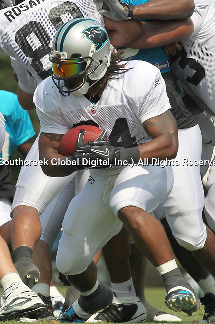 30July2010: Carolina Panther running back DeAngelo Williams (#34) takes a handoff. The Panthers held an afternoon training camp session at Wofford College in Spartanburg, South Carolina.