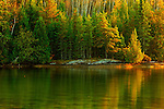 reflecttion of fall colours