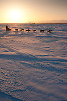 Rookie Michelle Phillips runs on the Unalakleet slough ice at sunrise just before Unalakleet in Arctic Alaska during the 2010 Iditarod