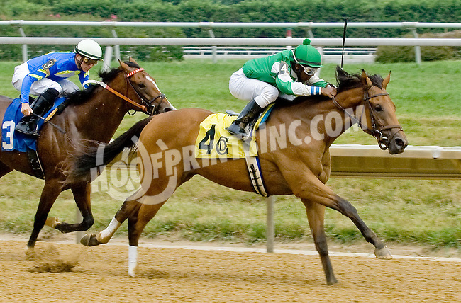 Alpha Mike Foxtrot winning at Delaware Park on 7/21/12