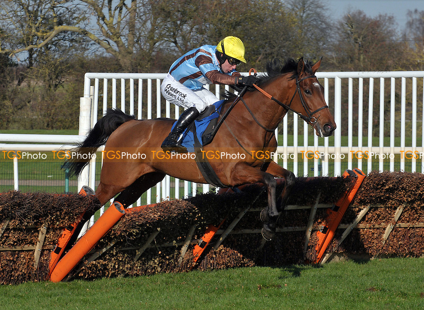 "Ama Jima ridden by Andrew Tinkler jumps the last flight of hurdles in the totequadpot E B F Mares´ ""National Hunt"" Novices´ Hurdle  at Huntingdon Racecourse, Brampton, Cambridgeshire - 19/11/2011 - MANDATORY CREDIT: Martin Dalton/TGSPHOTO - Self billing applies where appropriate - 0845 094 6026 - contact@tgsphoto.co.uk - NO UNPAID USE."