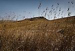 The Alto Belice area near Corleone, Sicily. / Alto Belice corleonese.