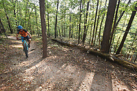 NWA Democrat-Gazette/FLIP PUTTHOFF<br />Hobbs State Park-Conservation Area recommends the Bashore Loop for first-time mountain bikers or hikers at the park. Tomek Siwiec circles the Loop on Sept 1 2017.