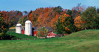 Farm scene near Danby, VT
