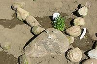 """Schulgarten, Anlage eines Schmetterlingsgarten, Garten der Grundschule Nusse wird als Projektarbeit von einer 1. Klasse gestaltet, Beete werden in Form eines Schmetterlings angelegt und mit für Nektarliebende Falter wichtigen Blumen bepflanzt, Ausschnitt vom Kopf mit """"Gesicht"""", Gartenarbeit"""