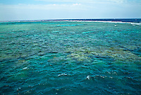 Coral reef visible beneath crystal clear waters, Soraya Reef, Gotta Sataya, Red Sea, Egypt.