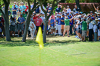 Alex Noren (SWE) hits from the trees on 5 during round 5 of the World Golf Championships, Dell Technologies Match Play, Austin Country Club, Austin, Texas, USA. 3/25/2017.<br /> Picture: Golffile | Ken Murray<br /> <br /> <br /> All photo usage must carry mandatory copyright credit (&copy; Golffile | Ken Murray)