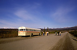 AK: Alaska Denali National Park, Wildlife Tour   .Photo Copyright: Lee Foster, lee@fostertravel.com, www.fostertravel.com, (510) 549-2202.Image: akdena226.
