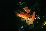 Cunner; fish; Newfoundland, CA; diver; annoying; picky; pesky;